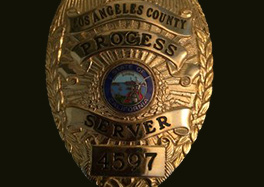 Photo_of_Badge